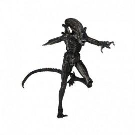 Figurine Aliens - Xenomorph Warrior Série 5 18cm