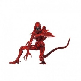 Figurine Aliens - Xenomorph Warrior Red Série 5 18cm